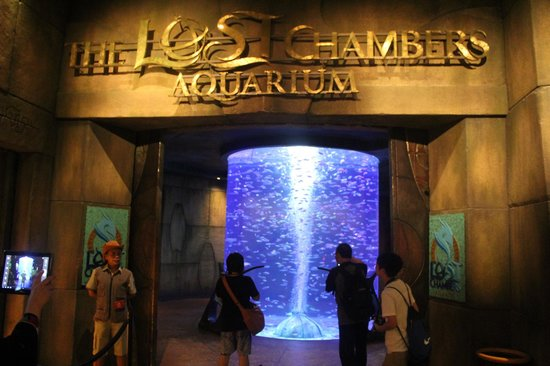 ‪The-Lost-Chambers-Aquarium