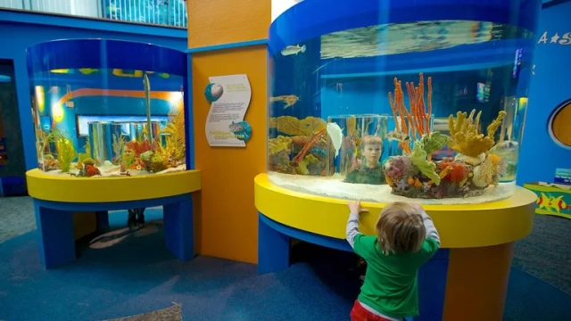 Ripleys-Aquarium-Of-The-Smokies-59358