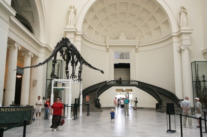 Tourists_and_mamenchisaurus_skeleton,_Field_Museum_of_Natural_History_(Chicago,_2005)